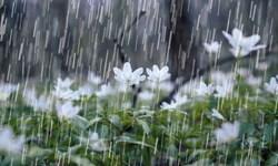 پیشبینی بارشهای پراکنده در ارتفاعات استان