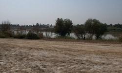 پروژه ساحلی اهواز - ملاثانی؛ از تعلل سازمان همیاری تا مانعتراشی شرکت نفت