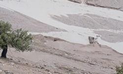 تخریب پل ارتباطی 2 روستای دیشموک بر اثر سیلاب