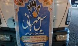ارسال دومین محموله کمکهای مردم شهرستان انار به سیلزدگان جنوب استان کرمان