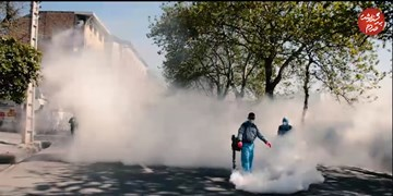 فیلم| ضدعفونی کردن شهر ساری