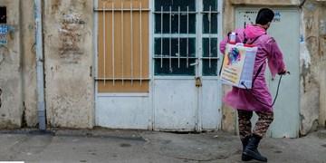 فیلم|ضد عفونی خیابانهای باغملک توسط تیپ امام حسن