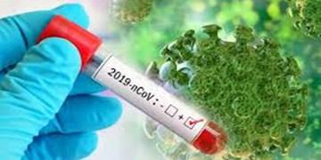 385 مبتلا به ویروس کرونا در آذربایجانغربی بهبود یافتهاند