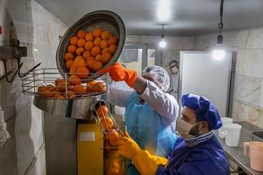 قراردادن پرتقال های ضدعفونی شده در دستگاه آبمیوه گیری