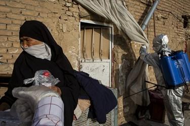 ضدعفونی منازل کوره های آجر پزی