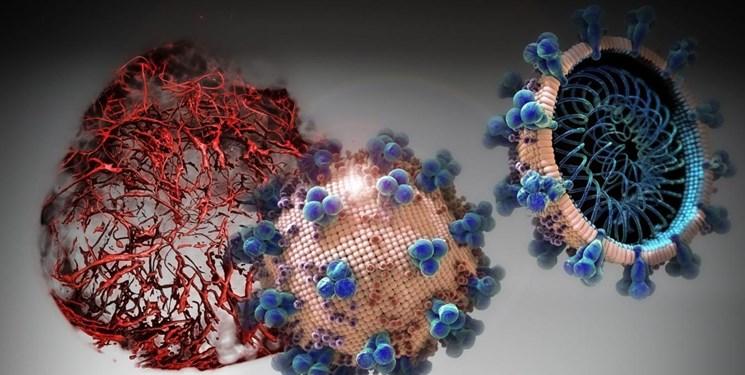 قدرت اولیه کرونا ویروس کنترل شد/شاید جهش ژنتیکی در کار باشد