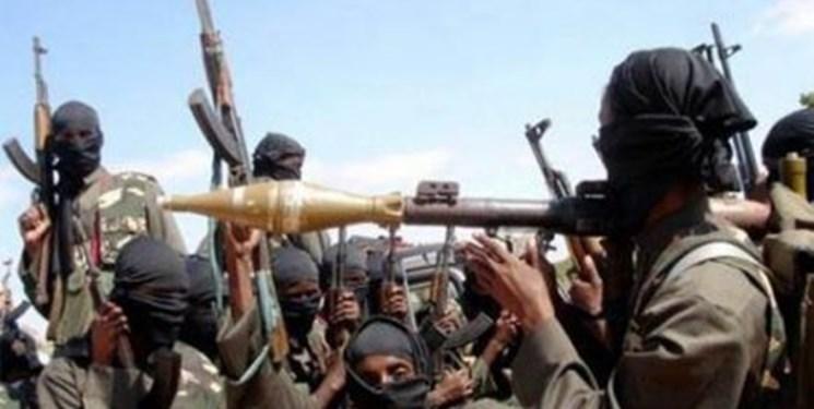 چاد پاکسازی این کشور از بوکو حرام را اعلام کرد