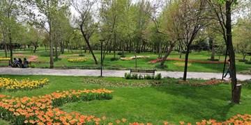 توسعه 10 هکتاری بوستان جوان