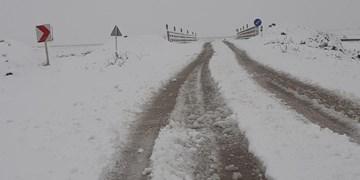 بارش برف بهاری در ارتفاعات هراز و کندوان/ کاهش دید در ارتفاعات سوادکوه