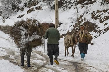 روستای ناتِر / مرزن آباد