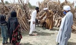 راهاندازی کاروان امید و شادی در روستاهای سیلزده ریگان توسط روحانیون