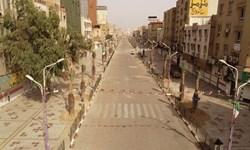 تکمیل طرح کاشت نخل مثمر در خیابان سلمان فارسی اهواز