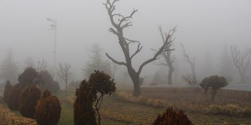 تایم لپس| پردیس در برف و مه