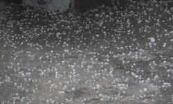 سیل و تگرگ در مهولات ۱۷۲ میلیارد تومان خسارت وارد کرده است