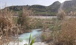 از تولد تا پیگیری برای ثبت چشمه آب گوگرد در ایلام+عکس
