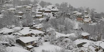 برف و سرما و آبگرفتگی از فردا در بخش هایی از کشور/هشدار جدی به کشاورزان