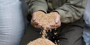 پرداخت زکات ۱۸ میلیارد ریالی مردم لنجان در سال ۹۹/ از توزیع کمکهای مومنانه تا اهدای جهیزیه