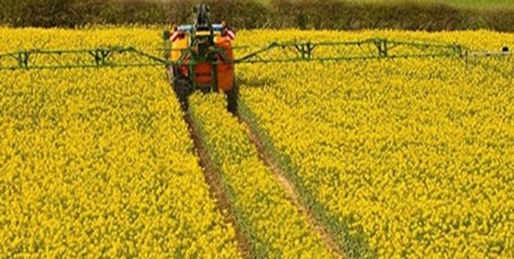 ابلاغ دستورالعمل جدید خرید تضمینی گندم و دانههای روغنی ۱۴۰۰/ افزایش 50 درصدی قیمت خرید تضمینی