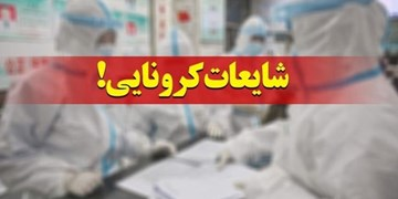 شناسایی ۳۰ انتشاردهنده اخبار جعلی کرونا در استان بوشهر