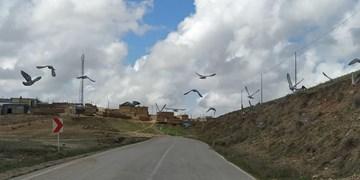 فارس من  راه اصلی روستای سلاله آسفالتریزی شده است/ اهالی درخواست آسفالتریزی جاده بین مزارع را دارند