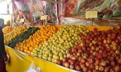 افزایش 6 درصدی شاخص قیمت تولیدکننده میوه در فصل زمستان 98