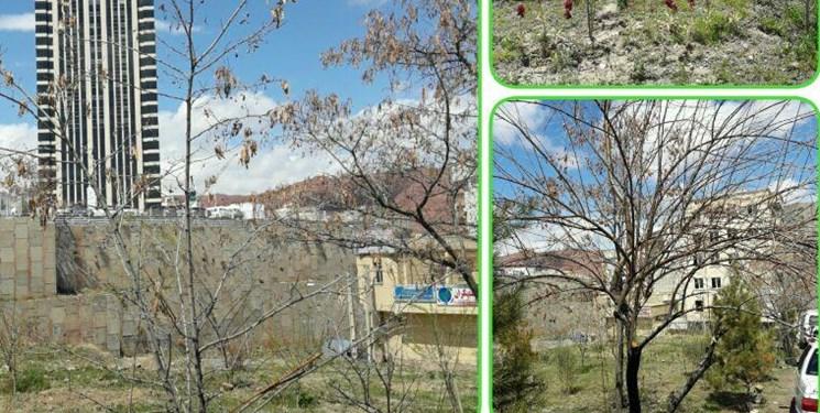 اظهار نظر دادستان در مورد زمین مورد مناقشه در تبریز