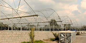 موانع اداری تکمیل زیرساخت شهرک گلخانهای «گنبد» رفع شود