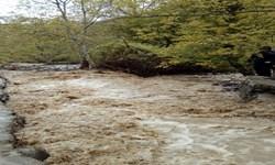 فیلم| ورود سیلاب به روستای «کهیا» در شهرستان طارم