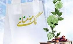 کمک مومنانه؛ توزیع ۴۰۰ بسته معیشتی در بین سیلزدگان ریگان توسط سپاه ثارالله