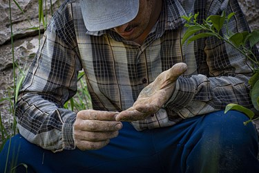 کارگر؛ بازوی «جهش تولید»