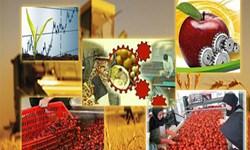 مشهد حایز رتبه نخست در صنایع تبدیلی و تکمیلی خراسان رضوی است
