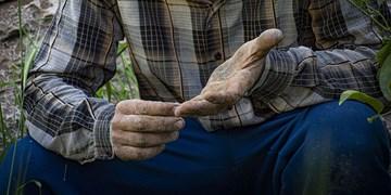 جامعه کارگری از نبود امنیت شغلی رنج میبرد