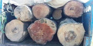کشف و ضبط یک دستگاه خودروی نیسان حاوی چوب قاچاق در  مراوهتپه