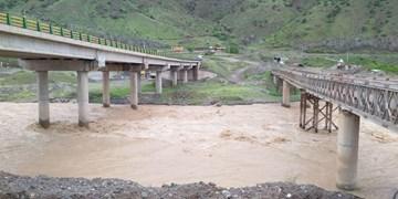 بارندگی به ۸۰ درصد از باغات و نهرهای کشاورزی خلخال خسارت زد