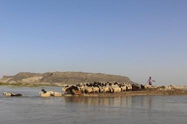 ۳۸۲۰ کیلومترمربع از وسعت دریاچهی هامون در ایران قرار دارد