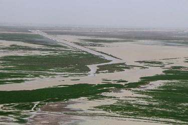 رودخانههای هیرمند به همراه خاشرود، فراه، هاروترود، شوررود، حسینآباد و نهبندان به دریاچه هامون میریزند.