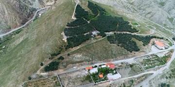 فارس من| فرماندار شمیرانات: مردم مستندات زمینخواری دربندسر را گزارش کنند/ آمادهسازی پرونده  «تپه سرخه» برای کمیسیون اصل نود