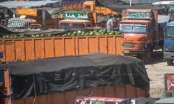61 درصد صادرات مرز پرویزخان، محصولات کشاورزی است/ ظرفیت سردخانههای کرمانشاه افزایش مییابد