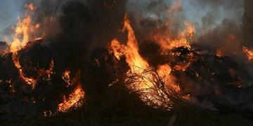 بیش از ۵هکتار از اراضی جو پیشوا از بین رفت/ معضل آتش زدن بقایای محصولات کشاورزی