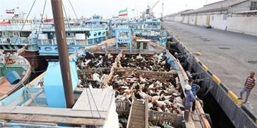 افزایش ۵۶۲ درصدی صادرات کالاهای غیرنفتی در بنادر و دریانوردی بندرلنگه