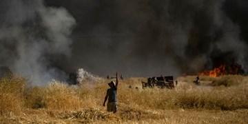 ادامه آتش سوزی در دهرود دشتستان/ درخواست امداد هوایی برای اطفای حریق