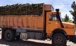 25 تن چوب قاچاق در مرودشت کشف شد/ بازداشت 2 قاچاقچی