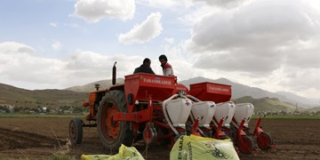 فصل کشت و زحمت کشاورزان