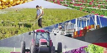 کشاورزی ایران در یک نگاه/ فقط 1 درصد کشاورزان تحصیلات مرتبط دارند+ اینفوگراف
