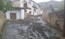 سیلاب شب گذشته آسیبی به خانه نیمایوشیج نرساند