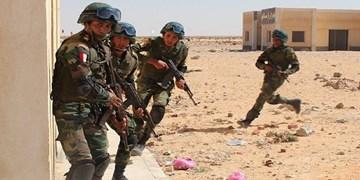 نیروهای امنیتی مصر 21 تروریست را در سینا کشتند