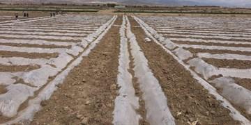 تمام اراضی کشاورزی استان سمنان سنددار میشوند