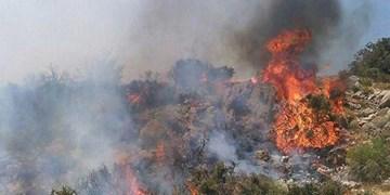 آتش سوزی در 3 هکتار از جنگلها و مراتع معمولان