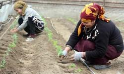 وام 3 میلیون دلاری ژاپن به زنان روستایی ازبکستان
