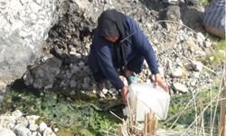 بهسازی 30 چشمه در مناطق عشایری دیشموک